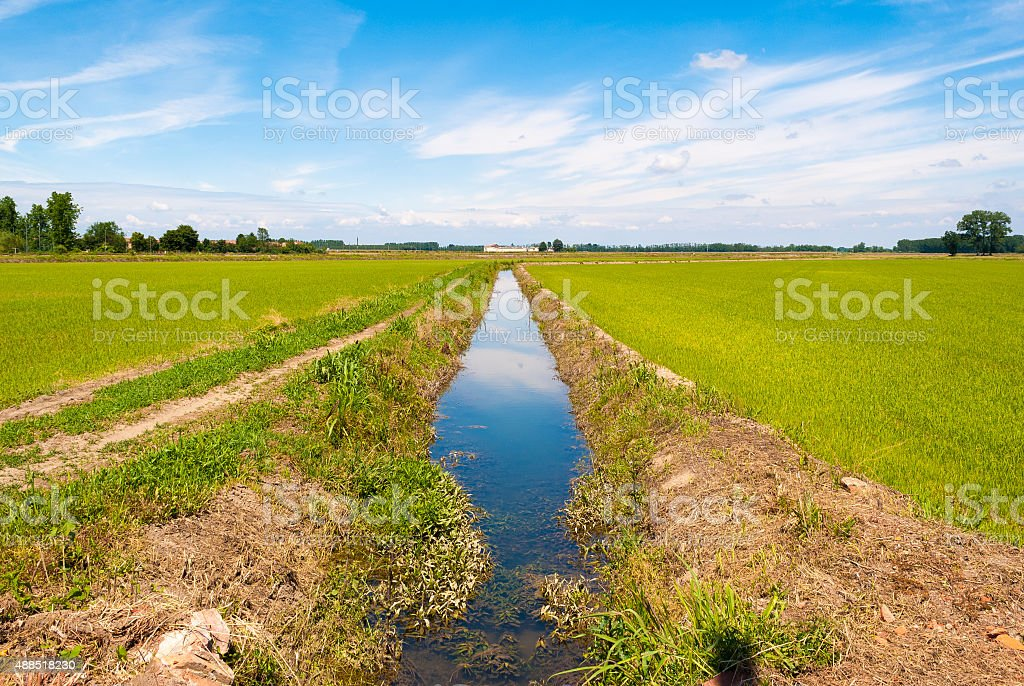 Canal for the irrigation of cultivated fields stock photo
