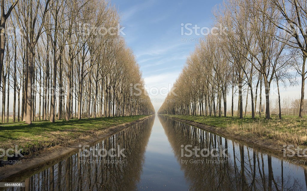 Canal in Belgium near Bruges stock photo