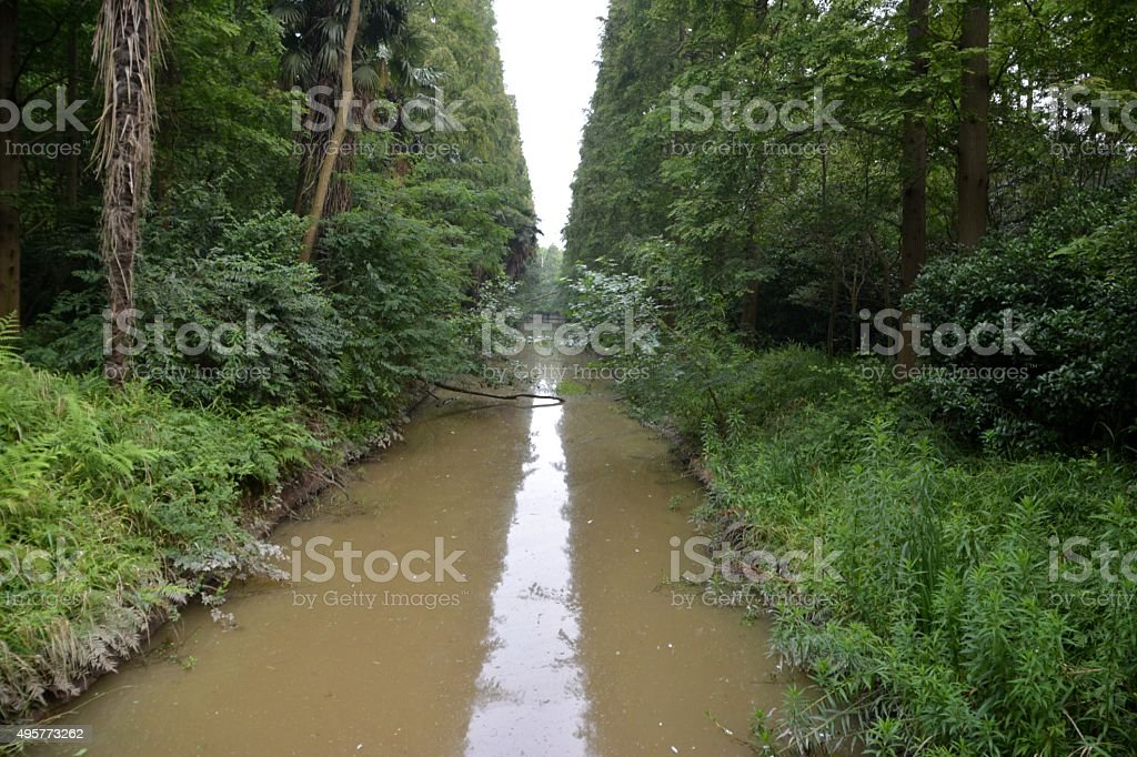 Canal in the Forest of Chongming island, Shanghai stock photo