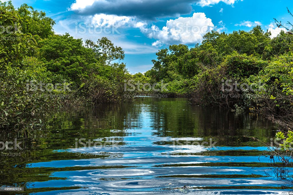 Canal over the Rio Negro river in Amazon, Brazil stock photo