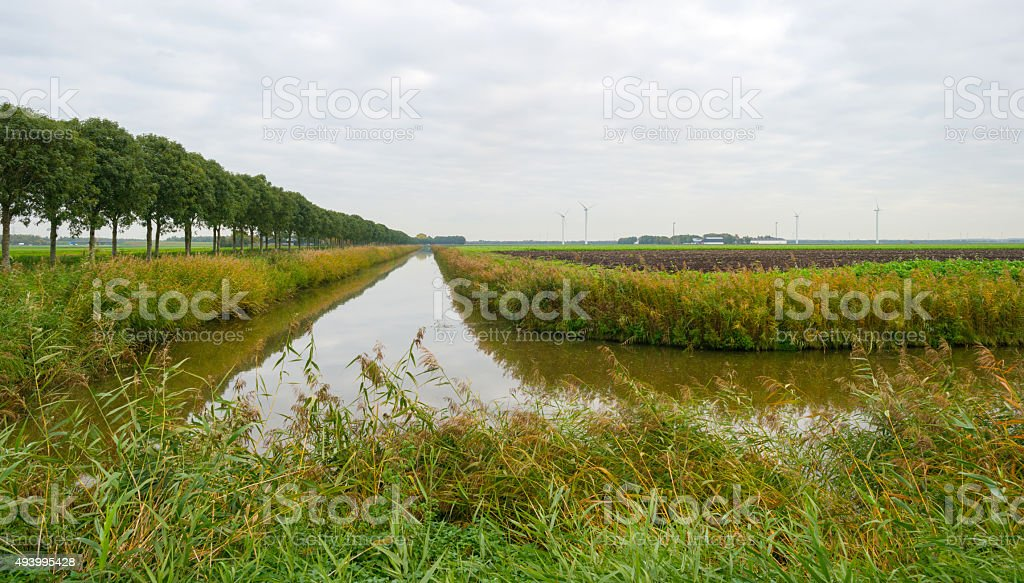 Canal through a rural landscape in autumn stock photo