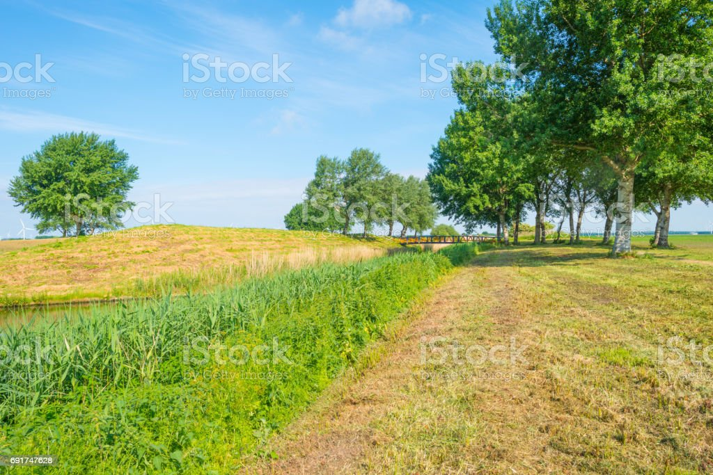 Canal through the countryside in spring stock photo
