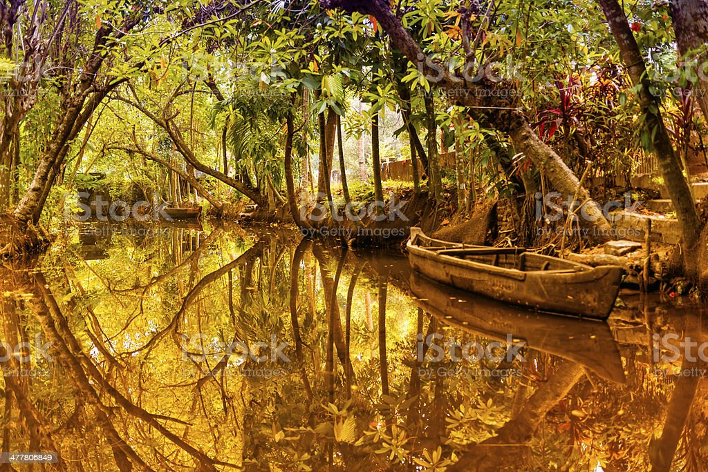Canals in Kerala royalty-free stock photo