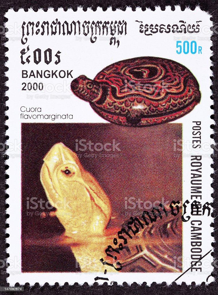 Canceled Cambodian Postage Stamp Chinese Box Turtle, Cuora Flavomarginata, Jar royalty-free stock photo