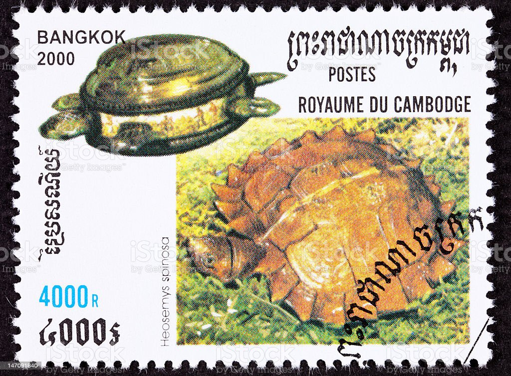Canceled Cambodian Postage Stamp Spiny Turtle, Heosemys spinosa, Brass Jar stock photo