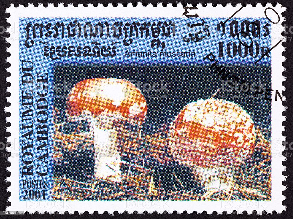 Canceled Cambodian Postage Stamp Toadstool Fly Agaric mushroom, Amanita muscaria. vector art illustration