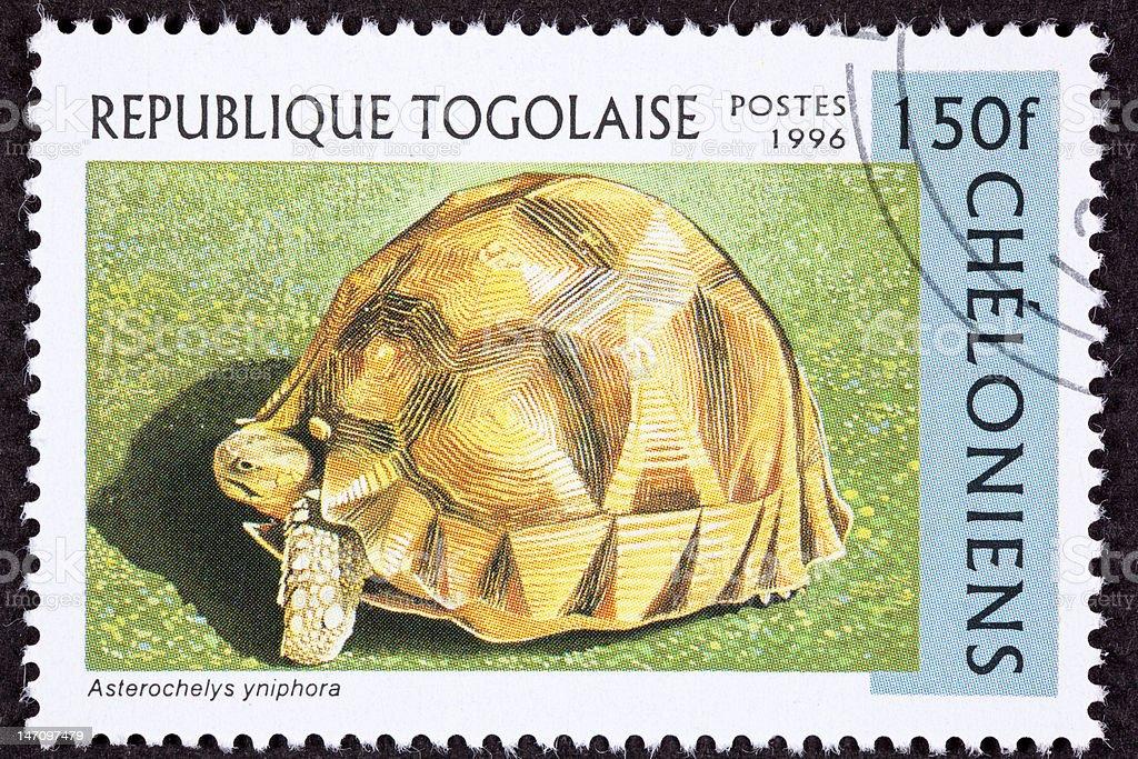 Canceled Togan Postage Stamp Angonoka, Ploughshare, Madagascar Tortoise, Geochelone Yniphora stock photo