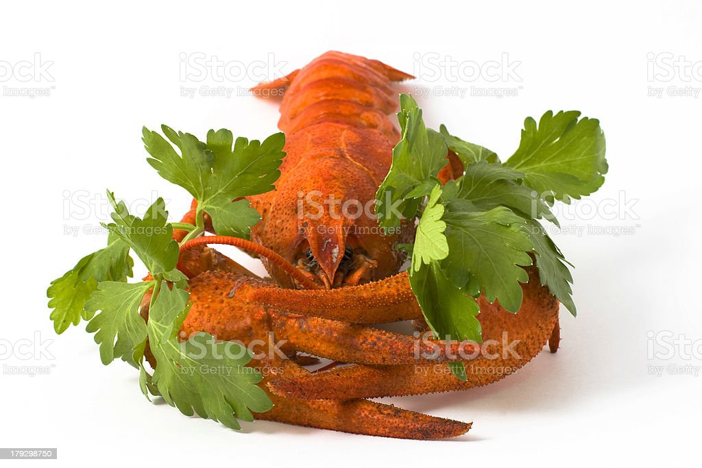 Cancer #3 royalty-free stock photo