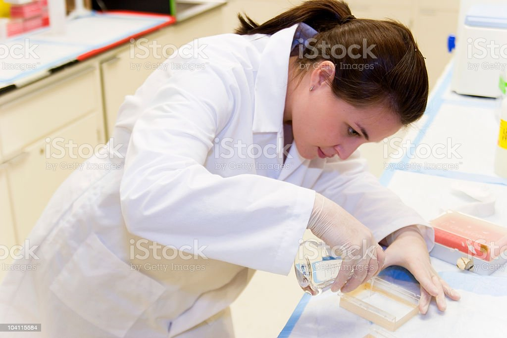 Cancer Research royalty-free stock photo