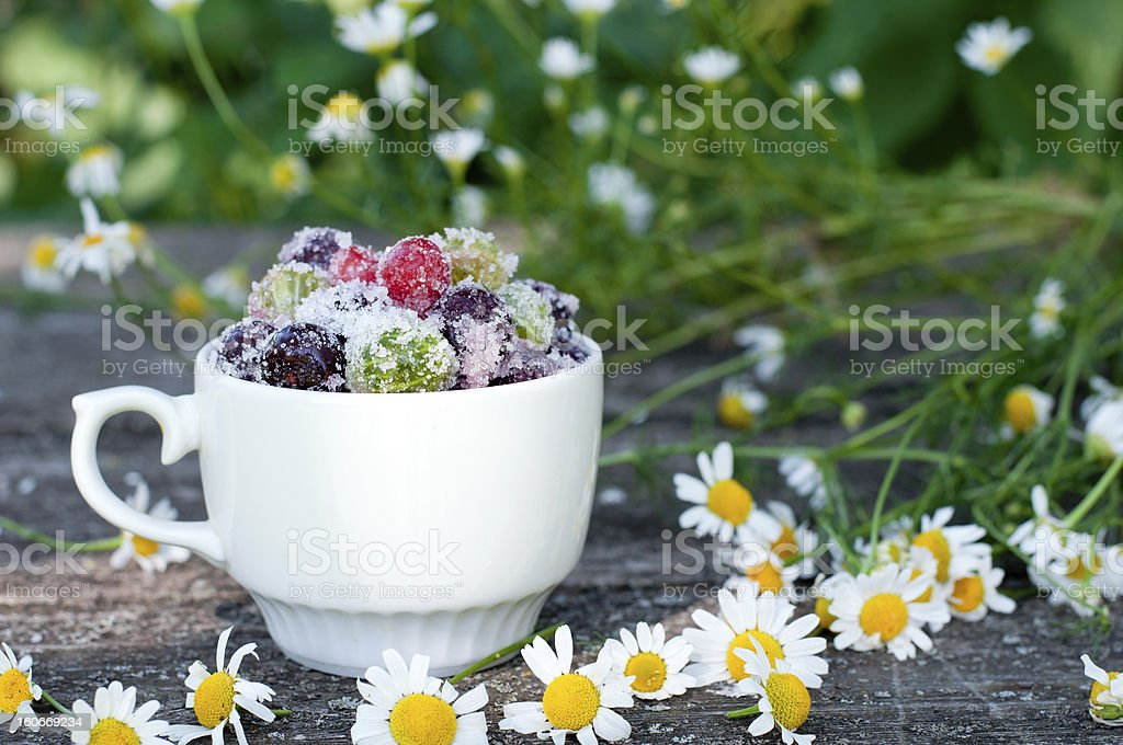 Candied fruit in a bowl royalty-free stock photo