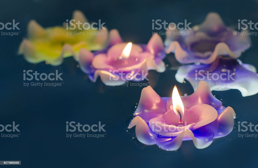 Candle light flower on the water stock photo