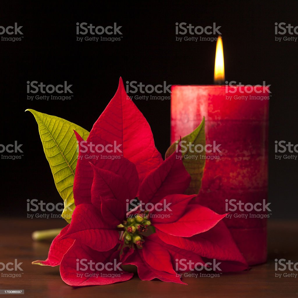 Candle with Poinsettia in the Foreground royalty-free stock photo