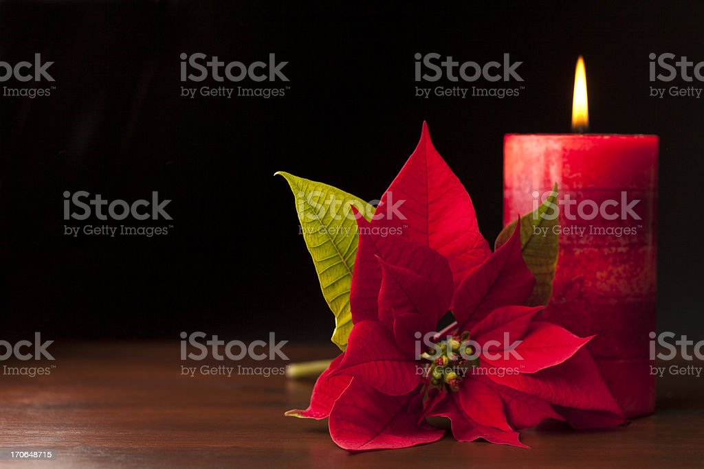 Candle with Poinsettia royalty-free stock photo