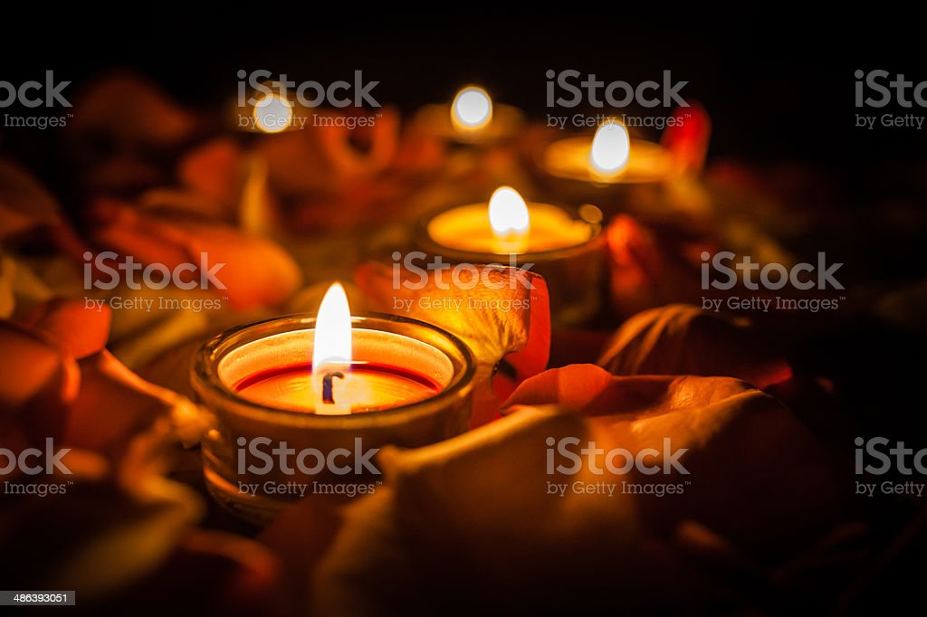 candles among the petals of roses stock photo