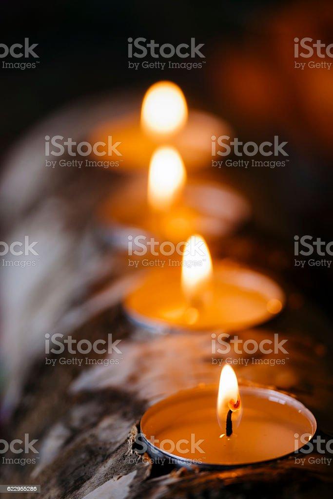 Candles on Christmas Log stock photo