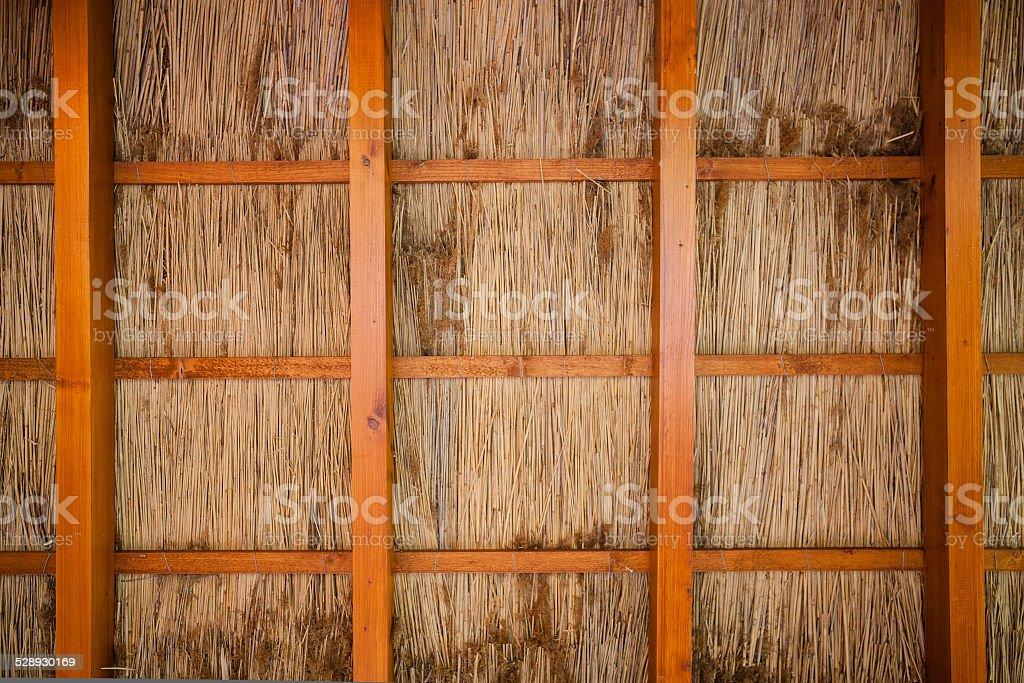 Cane shelter background stock photo
