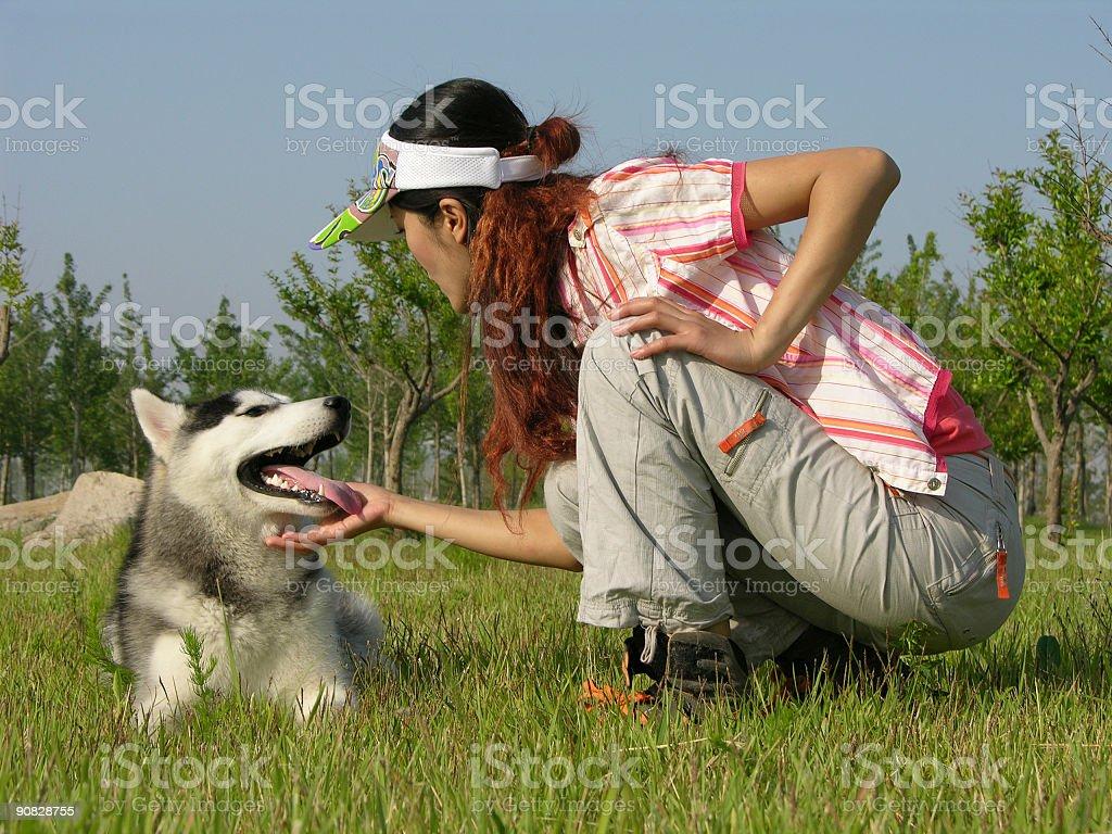 Caninity royalty-free stock photo