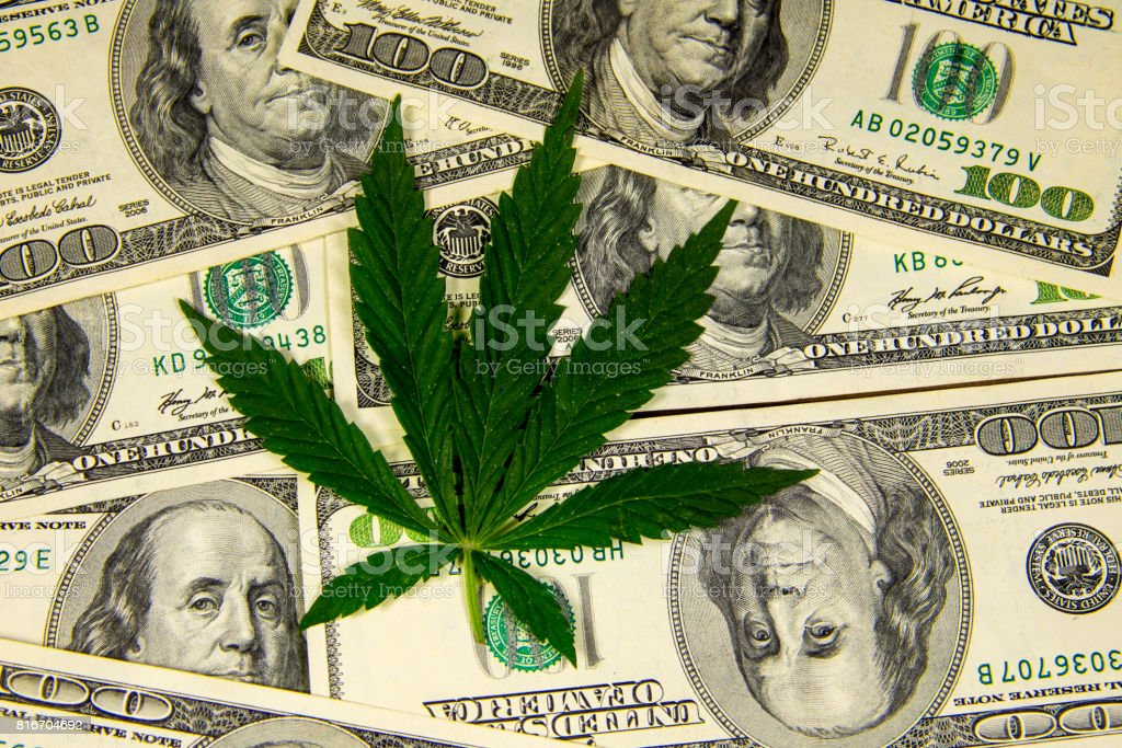 Cannabis leaf on heap of hundred dollar bills stock photo