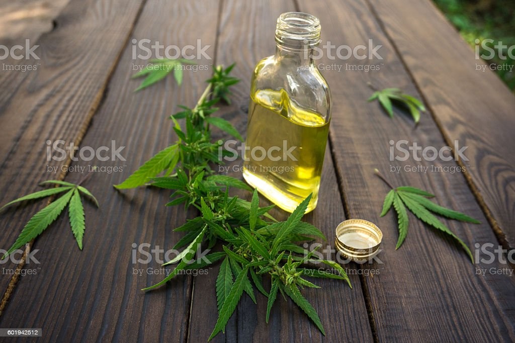 Cannabis leaves and bottle of hemp oil stock photo