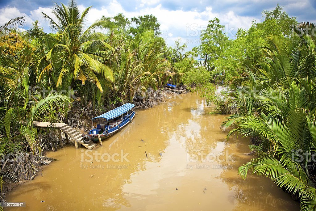 Cannal with Boats in Mekong delta, Ben Tre, Vietnam. stock photo