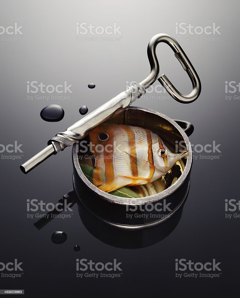 Canned exotic fish stock photo
