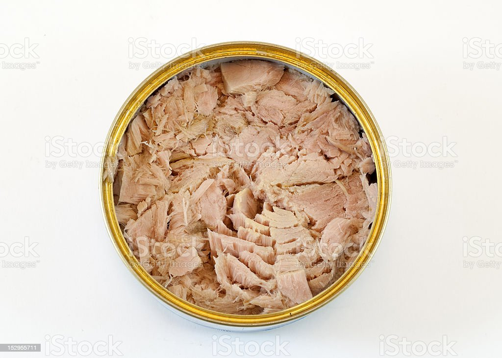 Canned tuna stock photo