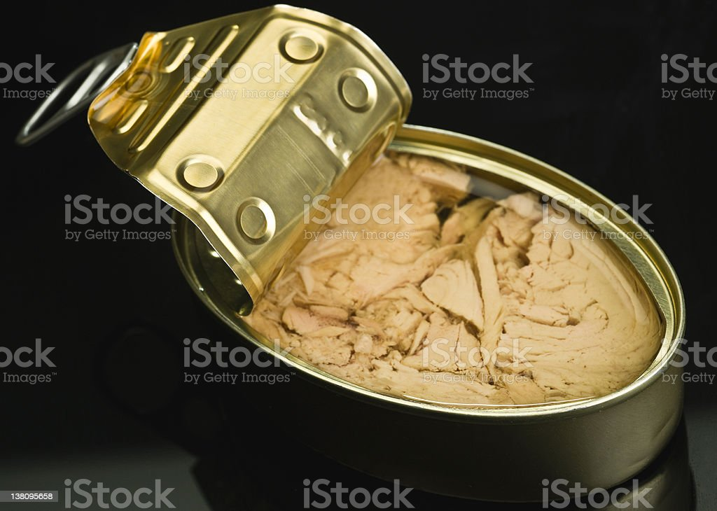 Canned White Meat Tuna in Olive Oil royalty-free stock photo