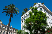 Cannes palm trees and luxury seafront building on French Riviera