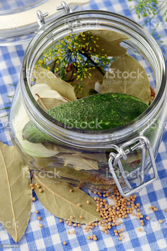 canning cucumber with spices stock photo