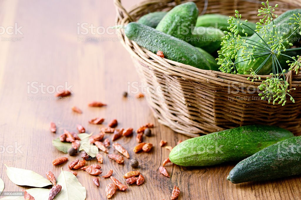 canning cumbers in a glass jar with herbs and spices stock photo
