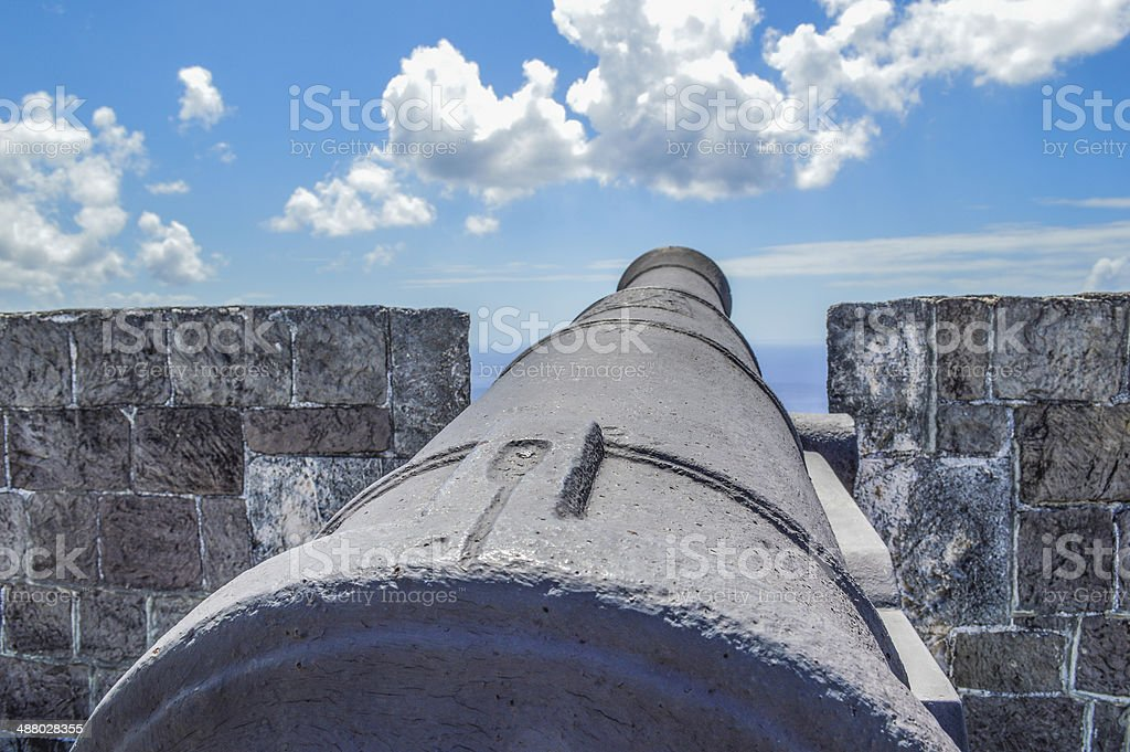 cannon aiming high stock photo