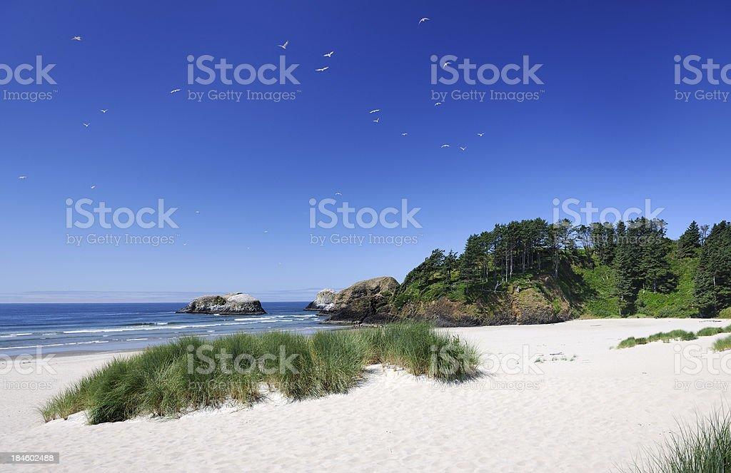 Cannon Beach - Beauty of Nature (XXXL) royalty-free stock photo