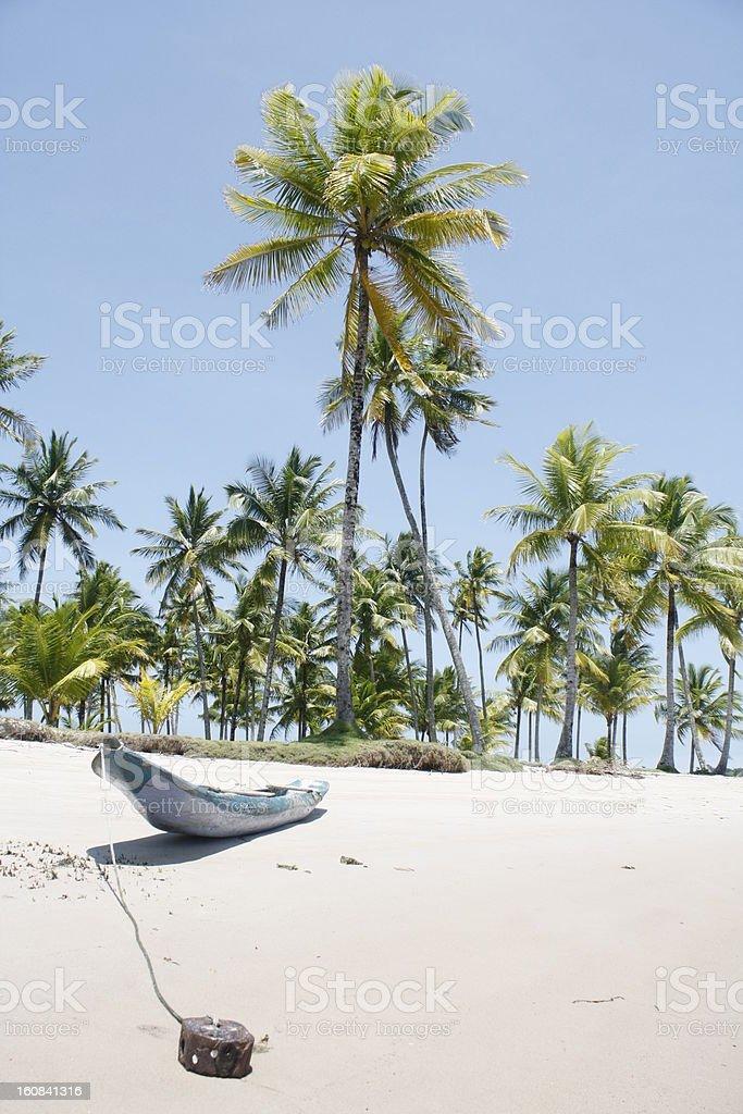 Canoe on an ocean beach royalty-free stock photo