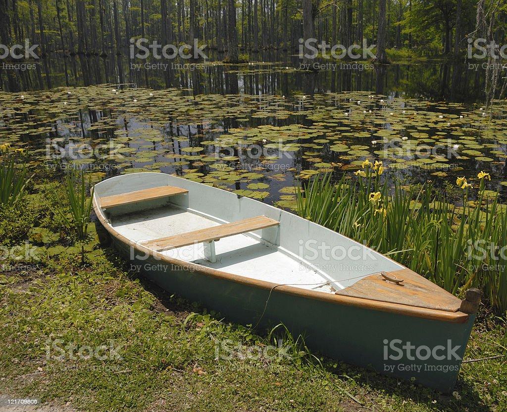 Canoe on cypress swamp royalty-free stock photo