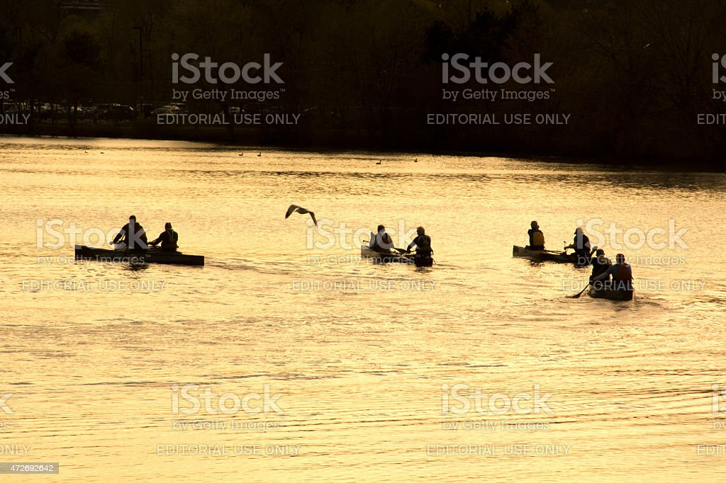 Canoe paddlers and seagull on the Charles River, Waltham, MA. stock photo