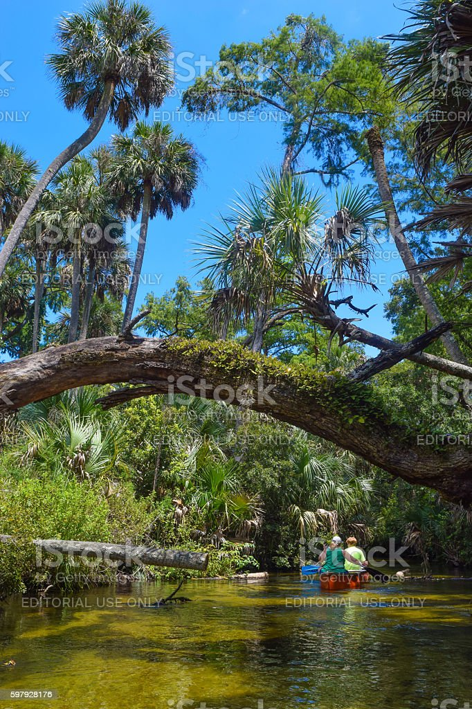 Canoeing Juniper Springs in The Ocala National Forest stock photo