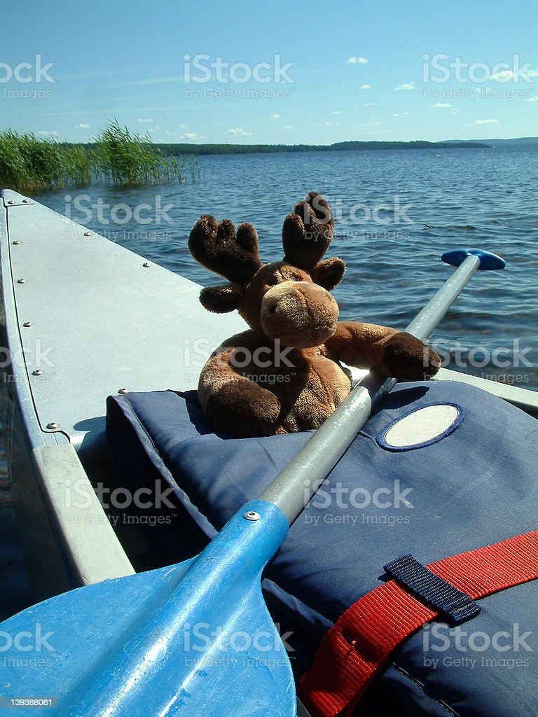 Canoeing moose royalty-free stock photo