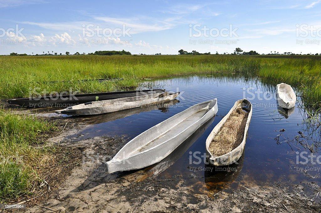 Canoes in the Okavango delta stock photo
