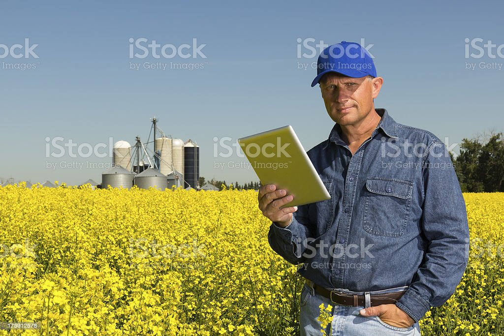 Canola Farmer and Computer royalty-free stock photo