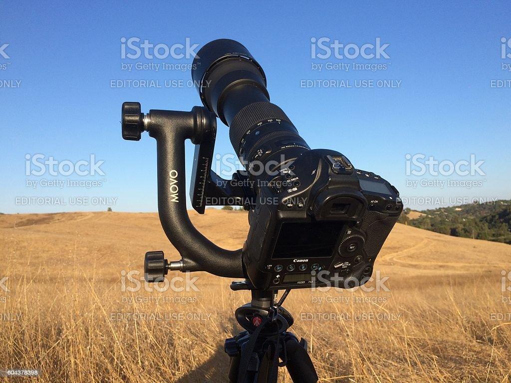 Canon camera with telephoto lens for bird stock photo