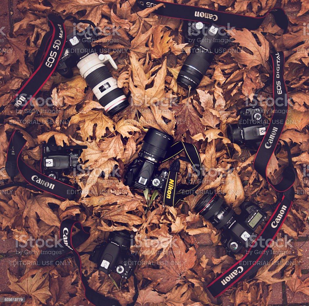 Canon Nikon Camera Wars stock photo