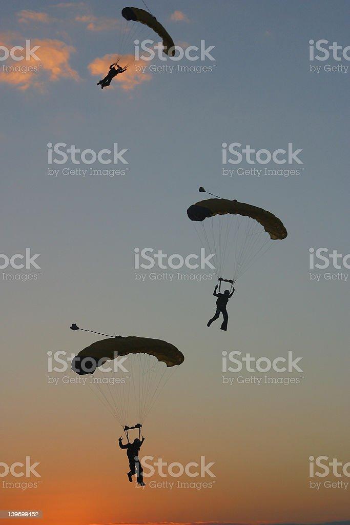 Canopies Landing royalty-free stock photo