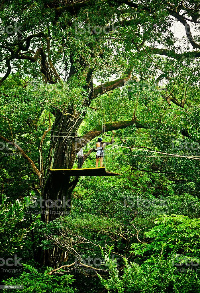 Canopy Tour Costa Rica stock photo