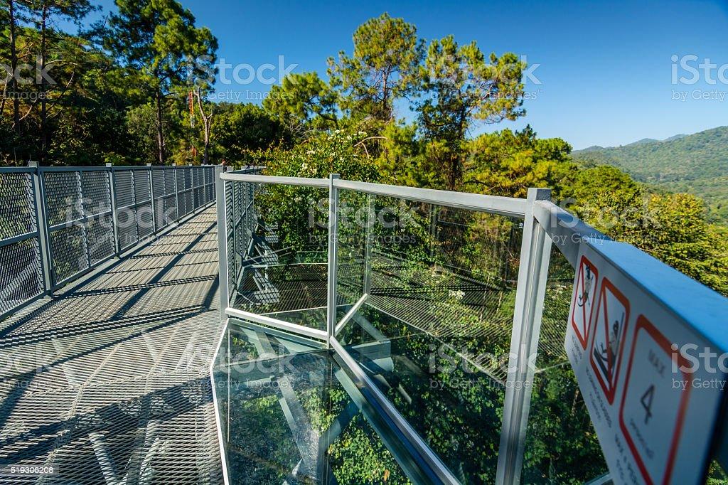 Canopy walkway royalty-free stock photo