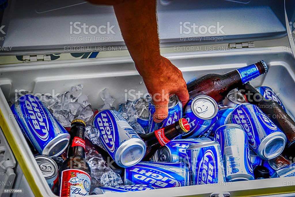 Cans and bottles of Budweiser Light in an cooler box. stock photo