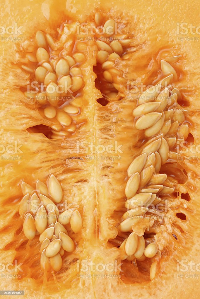 cantaloupe melon on the inside stock photo