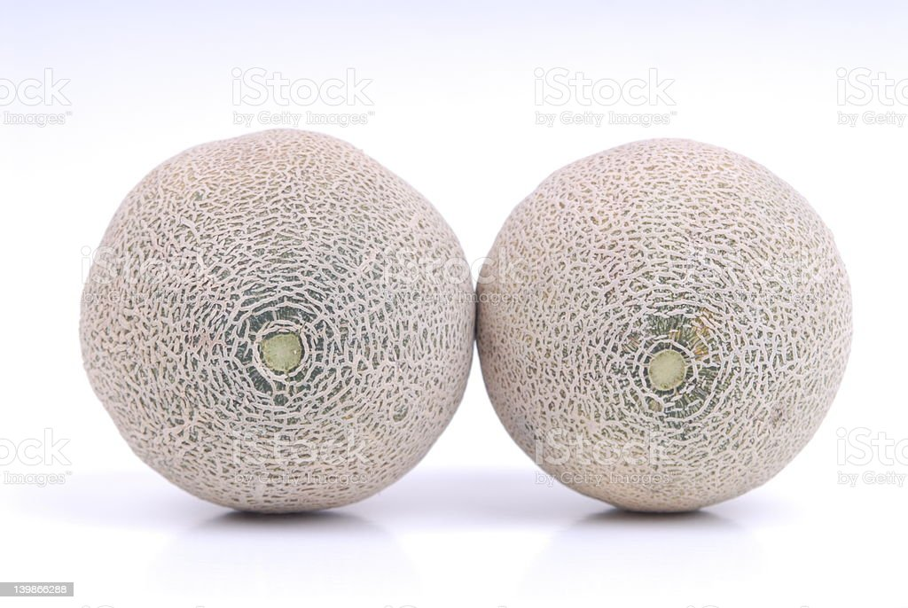 Cantelope melons stock photo