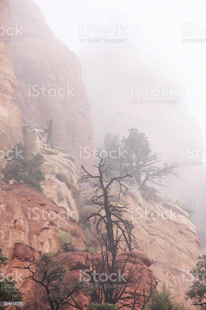 Canyon Cliff Fog Rain Red Rock Wilderness stock photo
