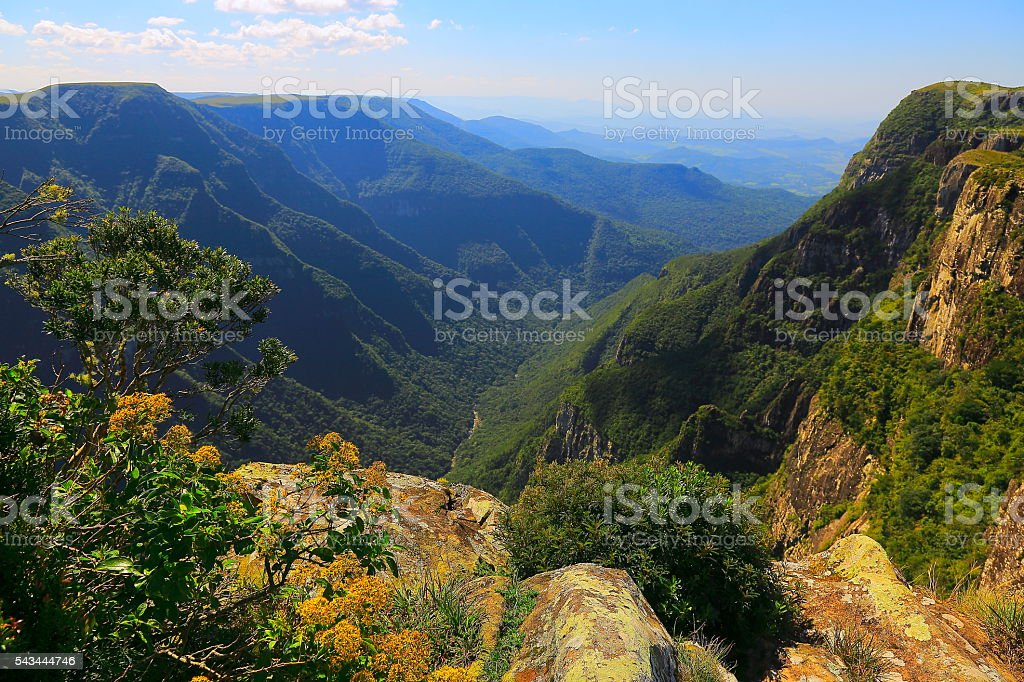Canyon Fortaleza Green valley, impressive rock face sunrise, Southern Brazil stock photo