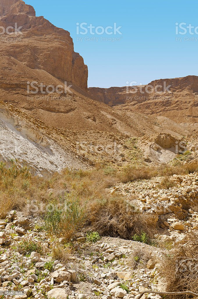 Canyon in  Desert stock photo